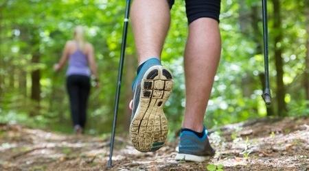 Маршрут для скандинавской ходьбы появится в Битцевском парке